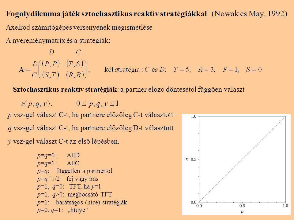 Fogolydilemma játék sztochasztikus reaktív stratégiákkal(Nowak és May, 1992) Axelrod számítógépes versenyének megismétlése A nyereménymátrix és a stratégiák: Sztochasztikus reaktív stratégiák: a partner előző döntésétől függően választ p vsz-gel választ C-t, ha partnere előzőleg C-t választott q vsz-gel választ C-t, ha partnere előzőleg D-t választott y vsz-gel választ C-t az első lépésben.