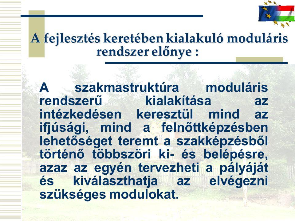 A fejlesztés keretében kialakuló moduláris rendszer előnye : A fejlesztés keretében kialakuló moduláris rendszer előnye : A szakmastruktúra moduláris