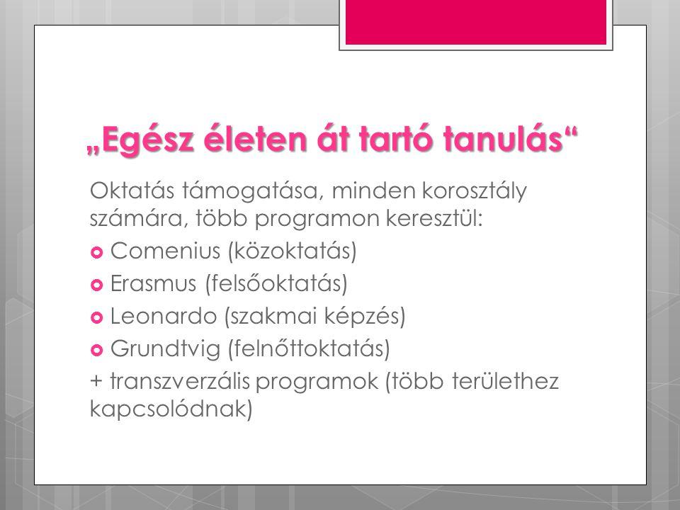 """""""Egész életen át tartó tanulás Oktatás támogatása, minden korosztály számára, több programon keresztül:  Comenius (közoktatás)  Erasmus (felsőoktatás)  Leonardo (szakmai képzés)  Grundtvig (felnőttoktatás) + transzverzális programok (több területhez kapcsolódnak)"""