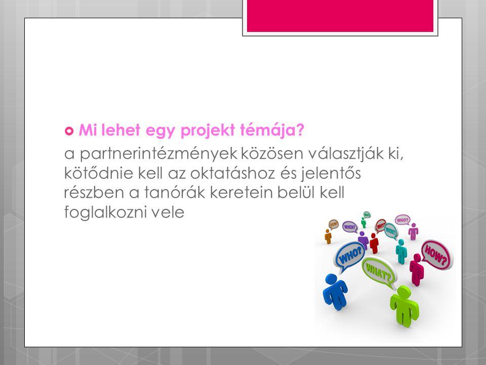 Projekttevékenységek  projekttalálkozók  csereprogramok  kutatómunka végzése  projektmunkák készítése (bemutatók, rajzok)  színdarabok készítése  partnerintézmények munkáinak értékelése