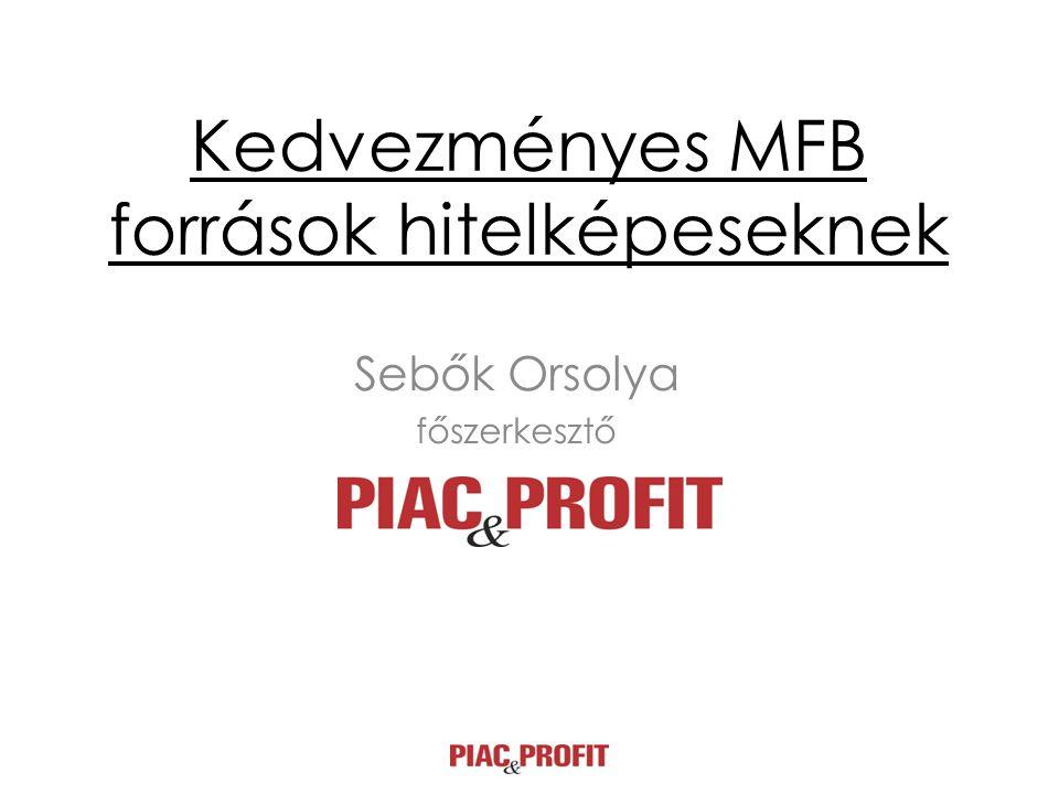 Kedvezményes MFB források hitelképeseknek Sebők Orsolya főszerkesztő