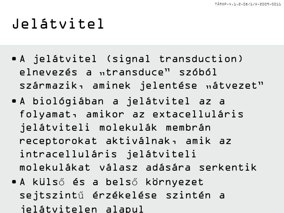 TÁMOP-4.1.2-08/1/A-2009-0011 Történet •Ez első tudományos cikk, ami specifikusan a jelátvitel kifejezést tartalmazta, 1972-ben jelent meg a MEDLINE adatbázisában.