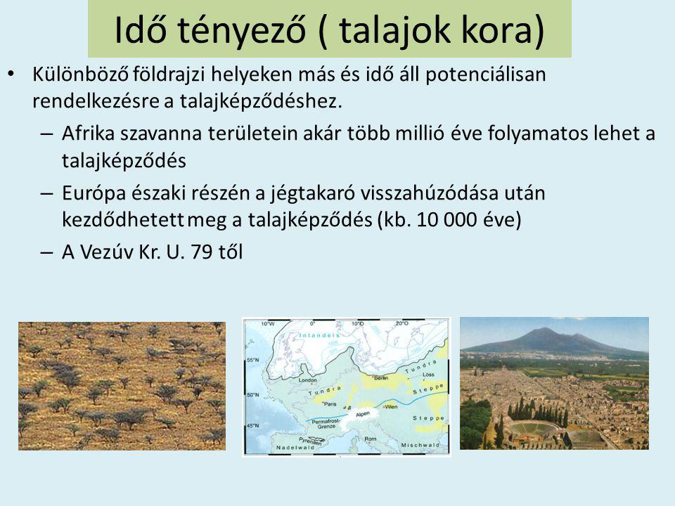Idő tényező ( talajok kora) • Különböző földrajzi helyeken más és idő áll potenciálisan rendelkezésre a talajképződéshez. – Afrika szavanna területein