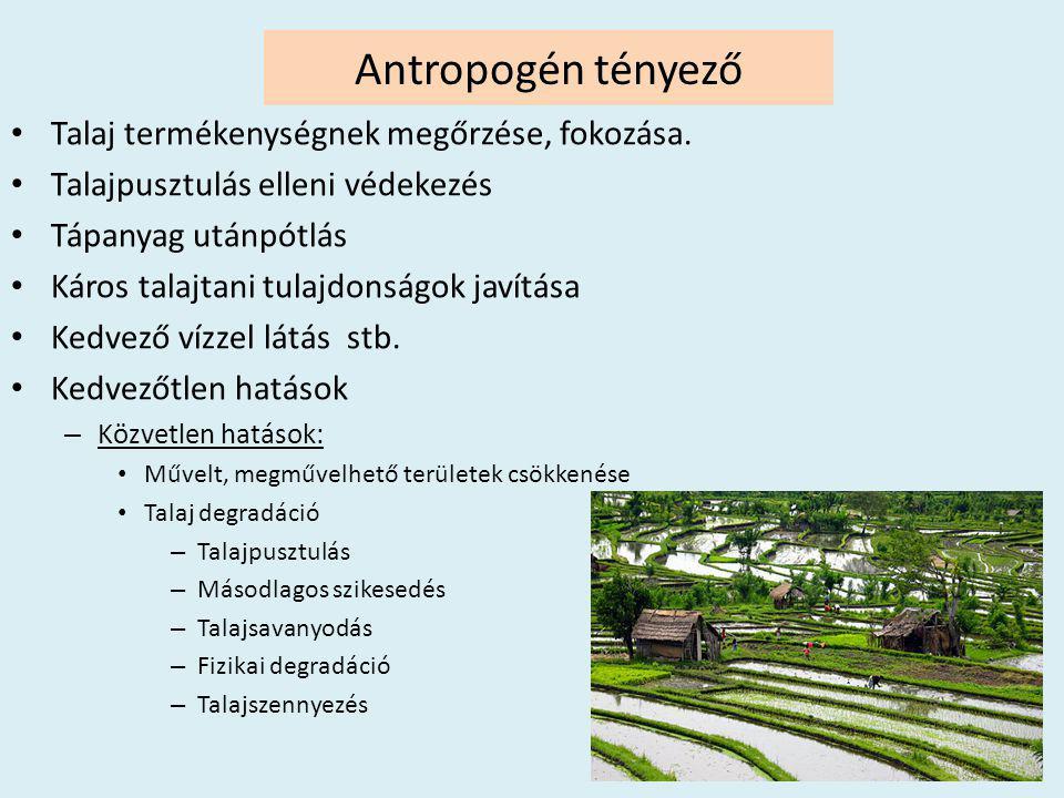 Antropogén tényező • Talaj termékenységnek megőrzése, fokozása. • Talajpusztulás elleni védekezés • Tápanyag utánpótlás • Káros talajtani tulajdonságo
