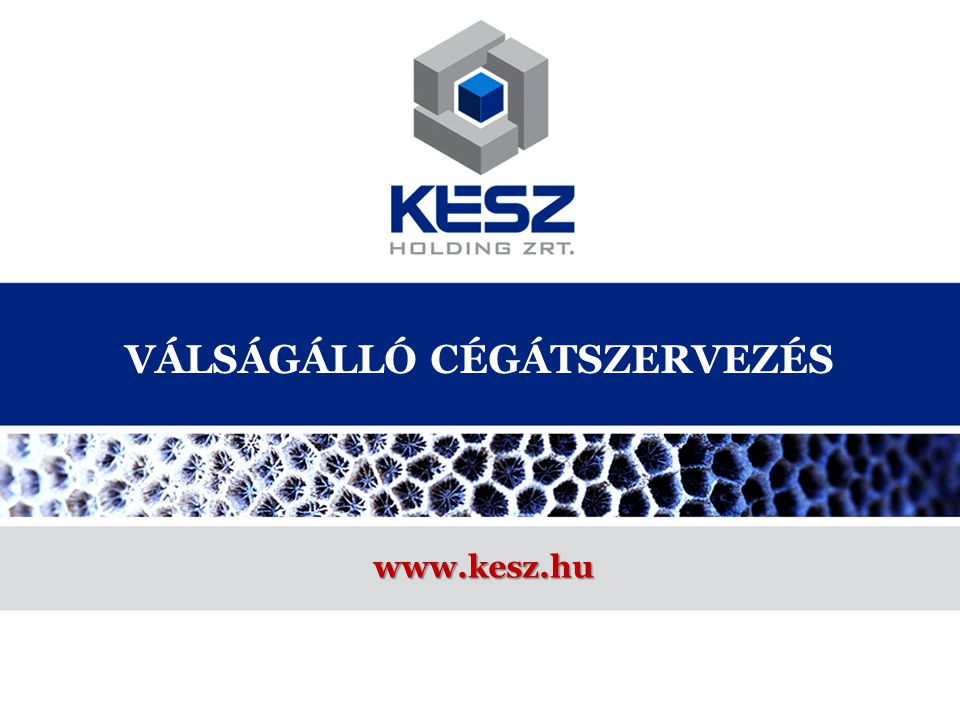 VÁLSÁGÁLLÓ CÉGÁTSZERVEZÉS www.kesz.hu