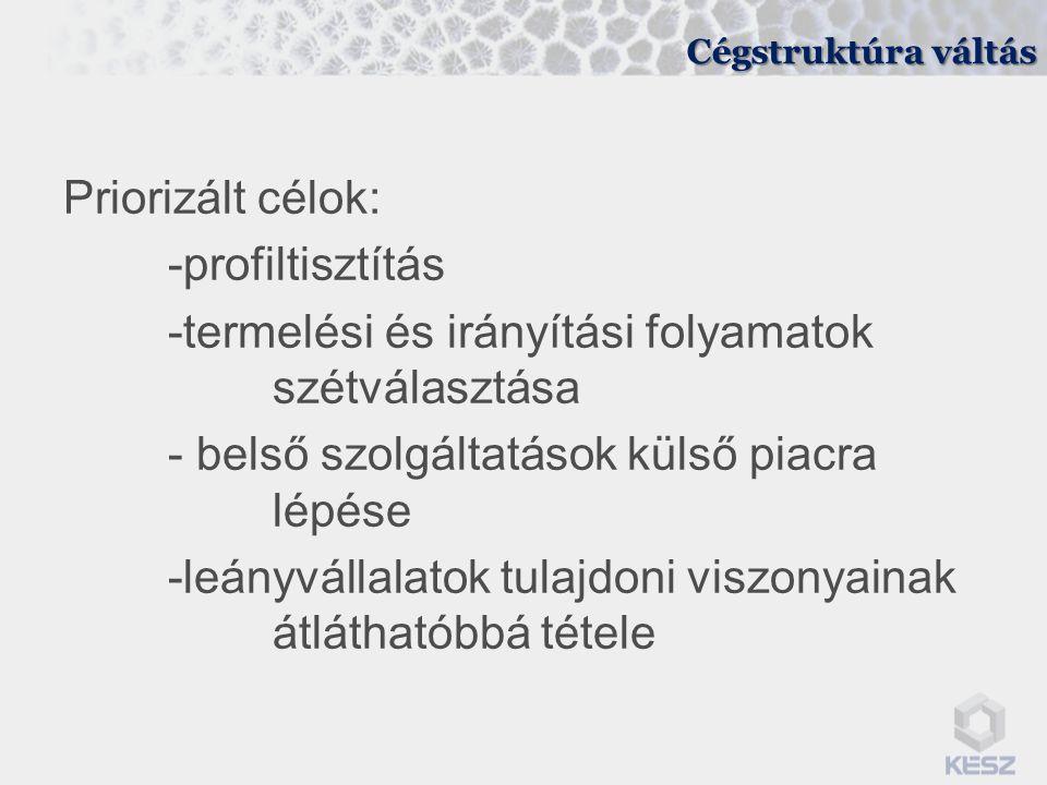 Cégstruktúra váltás Priorizált célok: -profiltisztítás -termelési és irányítási folyamatok szétválasztása - belső szolgáltatások külső piacra lépése -leányvállalatok tulajdoni viszonyainak átláthatóbbá tétele
