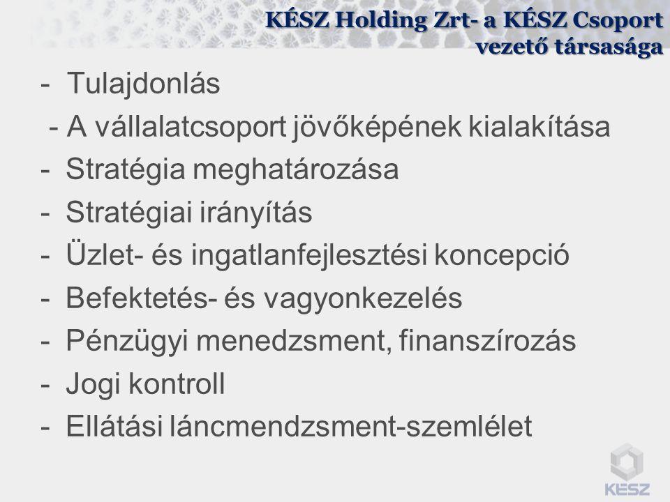 KÉSZ Holding Zrt- a KÉSZ Csoport vezető társasága - Tulajdonlás - A vállalatcsoport jövőképének kialakítása -Stratégia meghatározása -Stratégiai irány