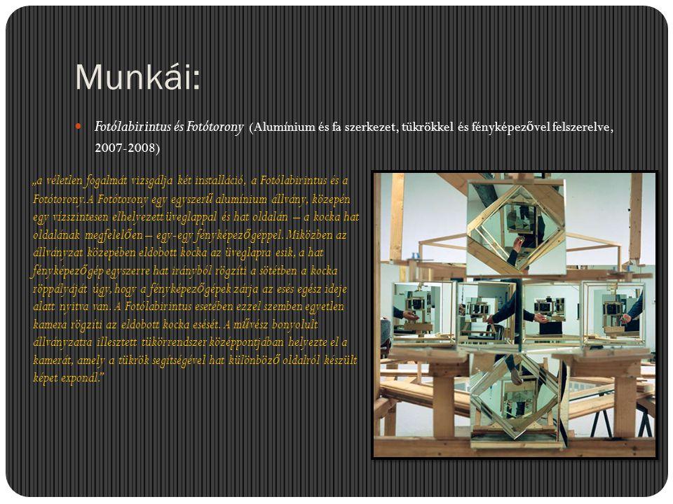 """Munkái:  Fotólabirintus és Fotótorony (Alumínium és fa szerkezet, tükrökkel és fényképez ő vel felszerelve, 2007-2008) """"a véletlen fogalmát vizsgálja"""
