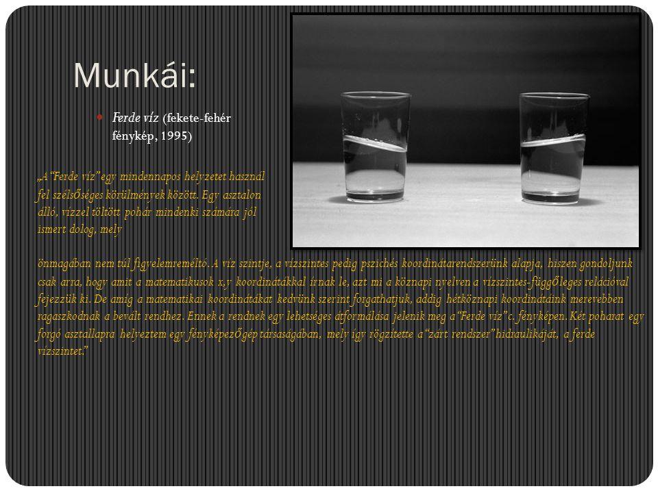 """Munkái:  Ferde víz (fekete-fehér fénykép, 1995) """"A """"Ferde víz"""" egy mindennapos helyzetet használ fel széls ő séges körülmények között. Egy asztalon á"""
