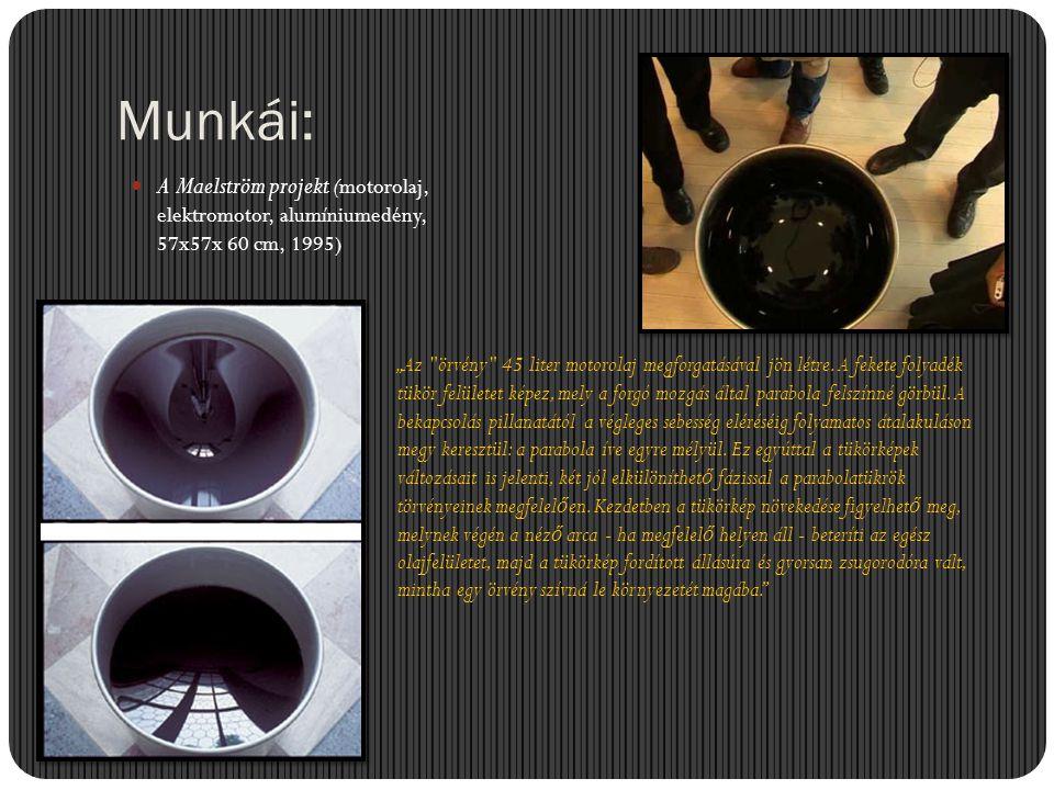 """Munkái:  A Maelström projekt (motorolaj, elektromotor, alumíniumedény, 57x57x 60 cm, 1995) """"Az"""