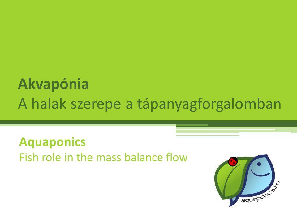 Akvapónia A halak szerepe a tápanyagforgalomban Aquaponics Fish role in the mass balance flow