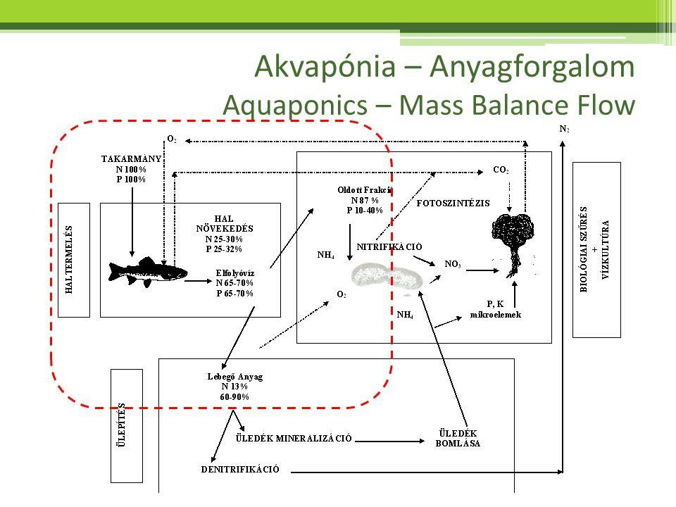 Akvapónia – Mineralizáció Aquaponics – Mineralization Nutrients Tápelemek (mg/L) Daily requirement from 20 L Napi szüks.
