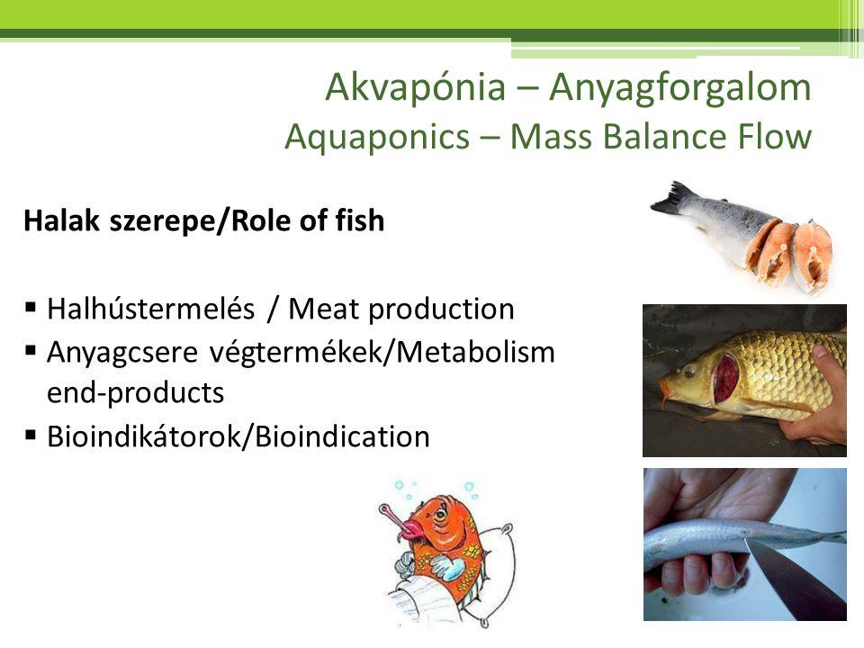Akvapónia – Anyagforgalom Aquaponics – Mass Balance Flow Mit kell biztosítani a halaknak.
