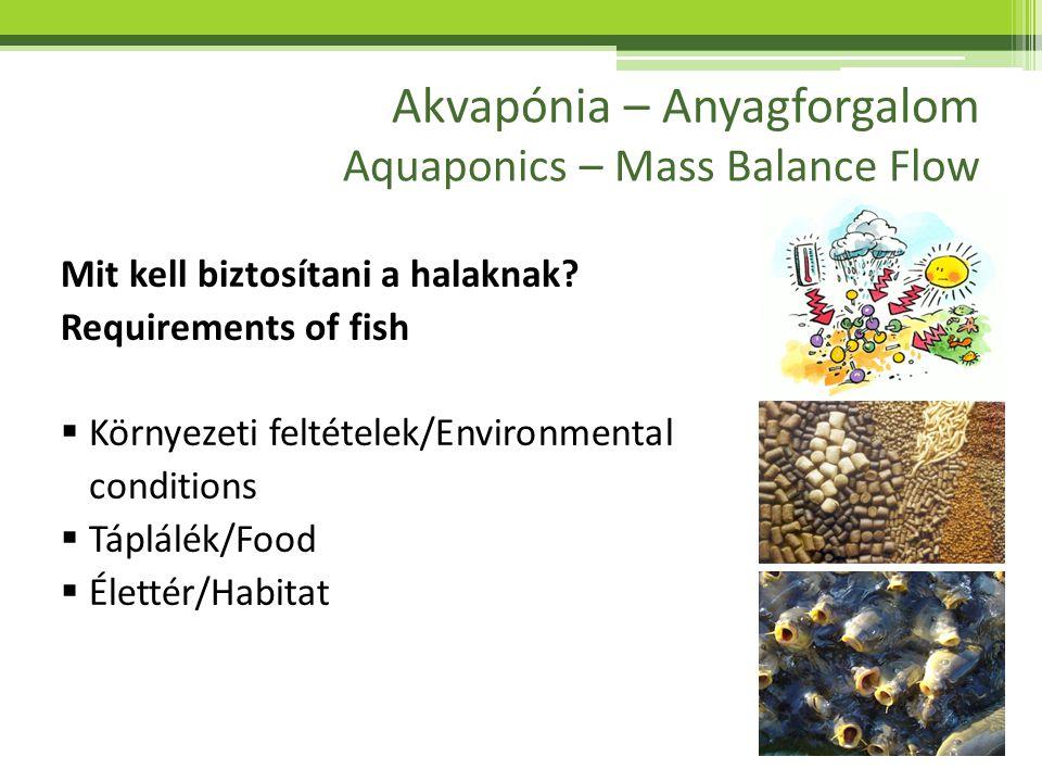 Akvapónia – Anyagforgalom Aquaponics – Mass Balance Flow Mit kell biztosítani a halaknak? Requirements of fish  Környezeti feltételek/Environmental c