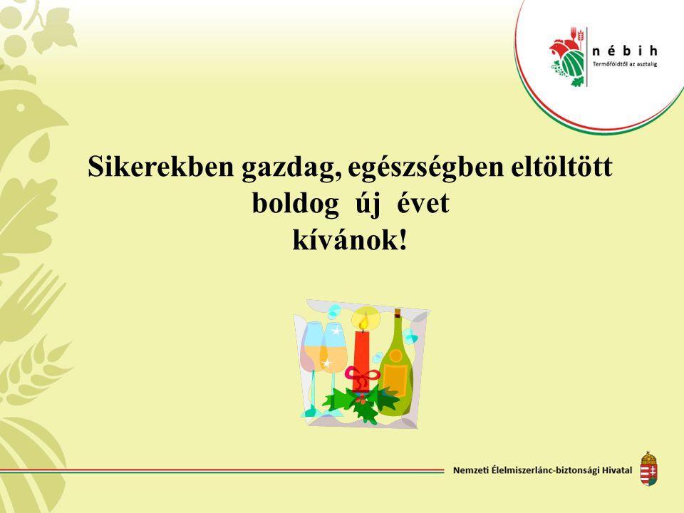 Sikerekben gazdag, egészségben eltöltött boldog új évet kívánok!