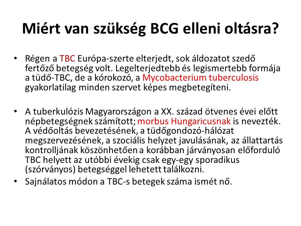 Miért van szükség BCG elleni oltásra? • Régen a TBC Európa-szerte elterjedt, sok áldozatot szedő fertőző betegség volt. Legelterjedtebb és legismerteb