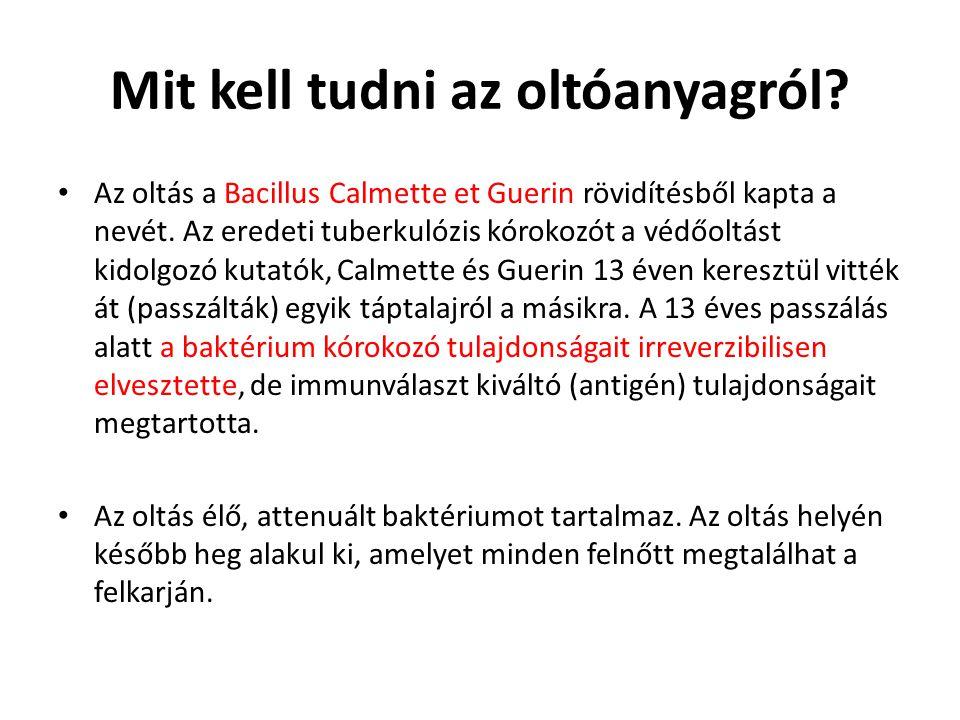 Mit kell tudni az oltóanyagról? • Az oltás a Bacillus Calmette et Guerin rövidítésből kapta a nevét. Az eredeti tuberkulózis kórokozót a védőoltást ki