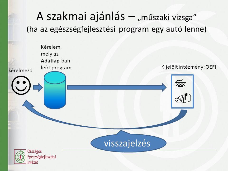 """A szakmai ajánlás – """"műszaki vizsga (ha az egészségfejlesztési program egy autó lenne)  kérelmező Kérelem, mely az Adatlap-ban leírt program visszajelzés  Kijelölt intézmény: OEFI"""