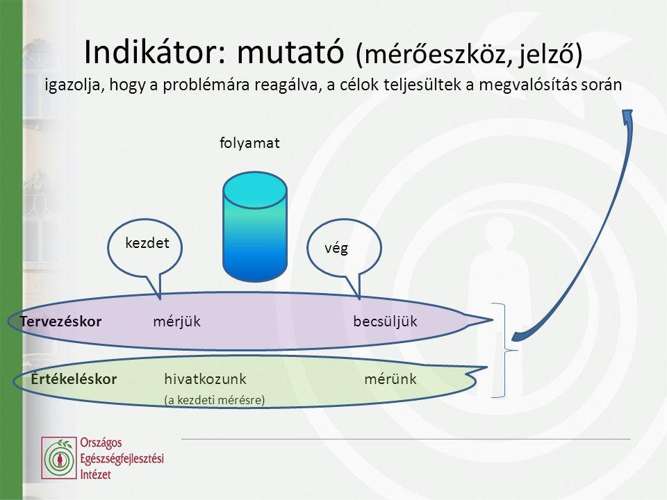 Indikátor: mutató (mérőeszköz, jelző) igazolja, hogy a problémára reagálva, a célok teljesültek a megvalósítás során kezdet vég folyamat Tervezéskormérjükbecsüljük Értékeléskorhivatkozunkmérünk (a kezdeti mérésre)