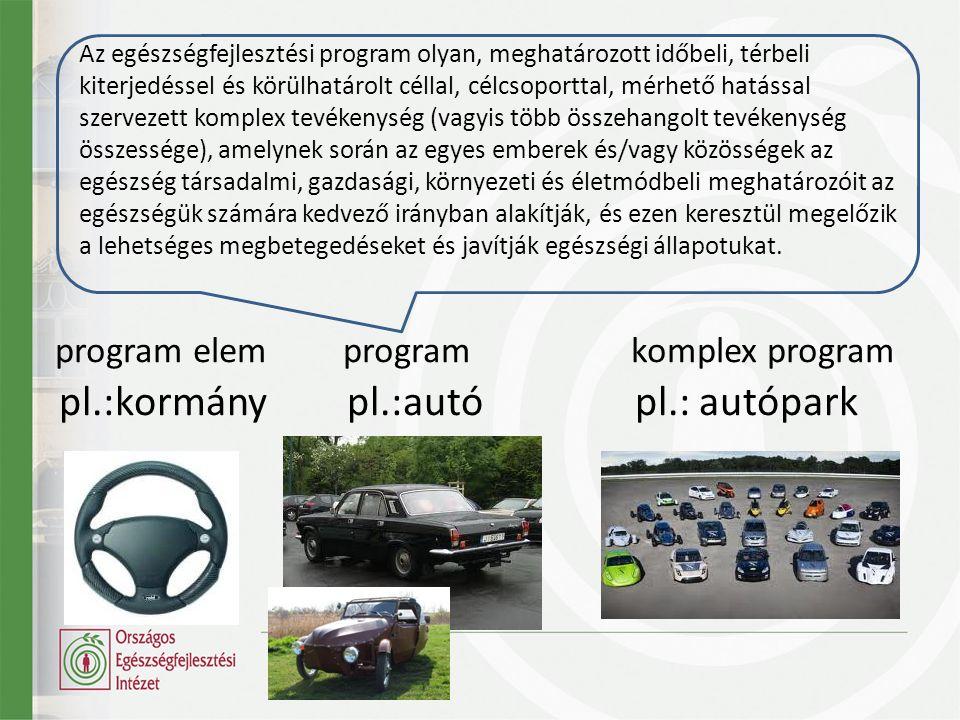 pl.:kormánypl.:autópl.: autópark program elemprogramkomplex program Az egészségfejlesztési program olyan, meghatározott időbeli, térbeli kiterjedéssel és körülhatárolt céllal, célcsoporttal, mérhető hatással szervezett komplex tevékenység (vagyis több összehangolt tevékenység összessége), amelynek során az egyes emberek és/vagy közösségek az egészség társadalmi, gazdasági, környezeti és életmódbeli meghatározóit az egészségük számára kedvező irányban alakítják, és ezen keresztül megelőzik a lehetséges megbetegedéseket és javítják egészségi állapotukat.