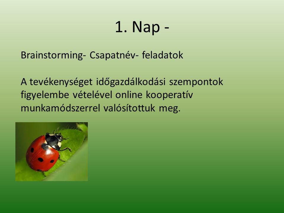 1. Nap - Brainstorming- Csapatnév- feladatok A tevékenységet időgazdálkodási szempontok figyelembe vételével online kooperatív munkamódszerrel valósít