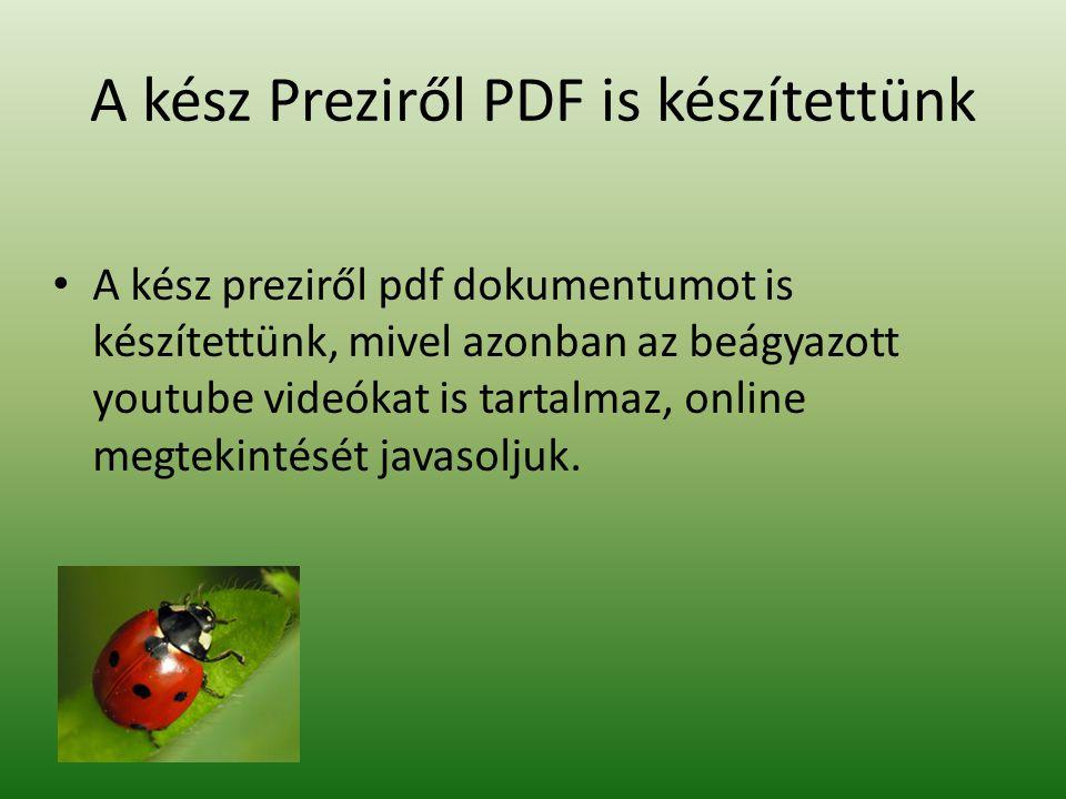 A kész Preziről PDF is készítettünk • A kész preziről pdf dokumentumot is készítettünk, mivel azonban az beágyazott youtube videókat is tartalmaz, onl