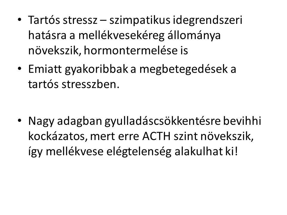 • Tartós stressz – szimpatikus idegrendszeri hatásra a mellékvesekéreg állománya növekszik, hormontermelése is • Emiatt gyakoribbak a megbetegedések a