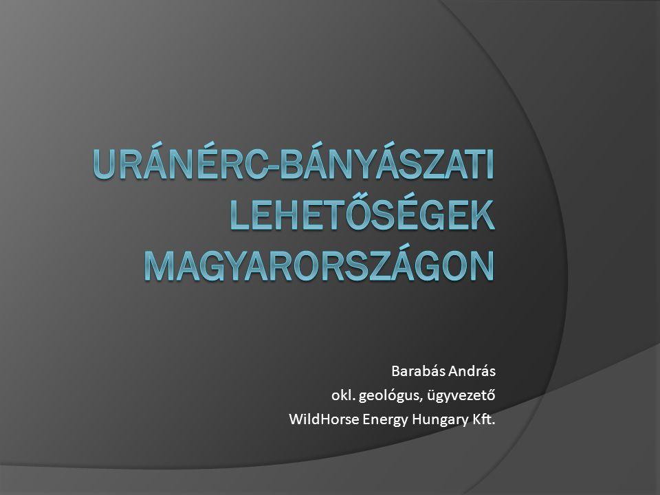 Barabás András okl. geológus, ügyvezető WildHorse Energy Hungary Kft.