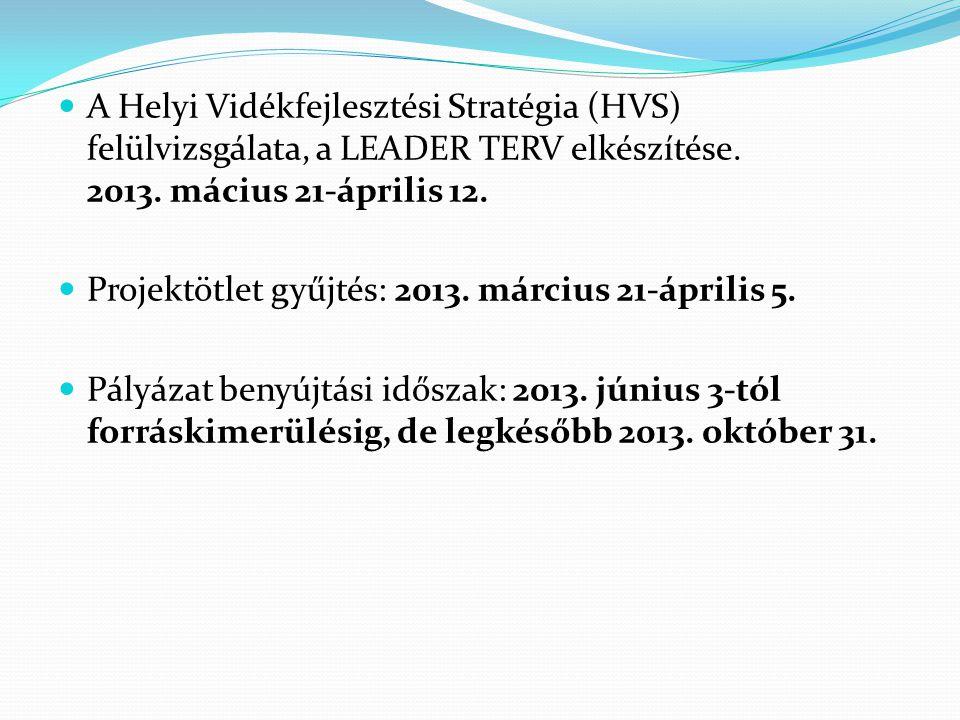  A Helyi Vidékfejlesztési Stratégia (HVS) felülvizsgálata, a LEADER TERV elkészítése. 2013. mácius 21-április 12.  Projektötlet gyűjtés: 2013. márci