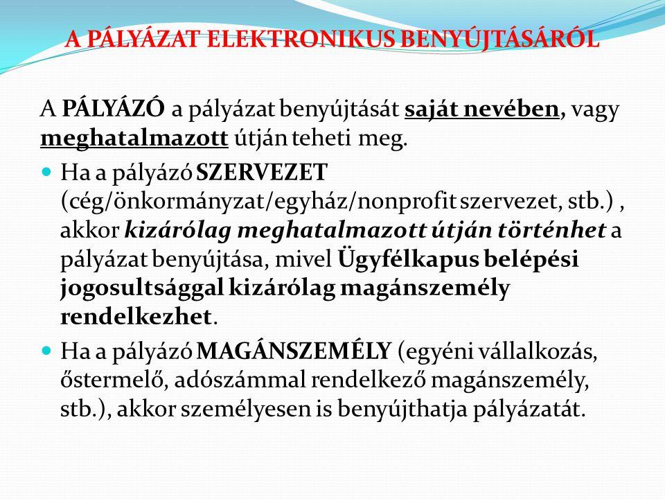 A PÁLYÁZAT ELEKTRONIKUS BENYÚJTÁSÁRÓL A PÁLYÁZÓ a pályázat benyújtását saját nevében, vagy meghatalmazott útján teheti meg.  Ha a pályázó SZERVEZET (
