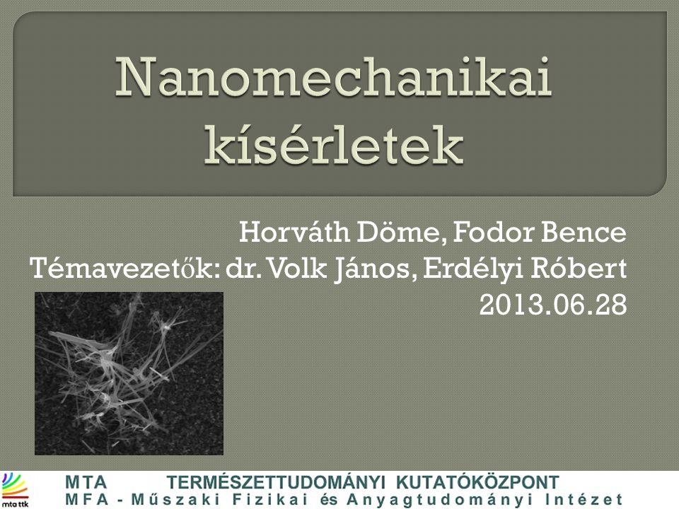 Horváth Döme, Fodor Bence Témavezet ő k: dr. Volk János, Erdélyi Róbert 2013.06.28