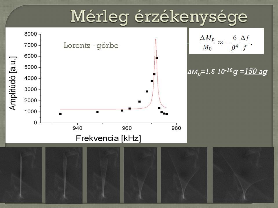 ΔM p =1.5 · 10 -16 g =150 ag Lorentz - görbe