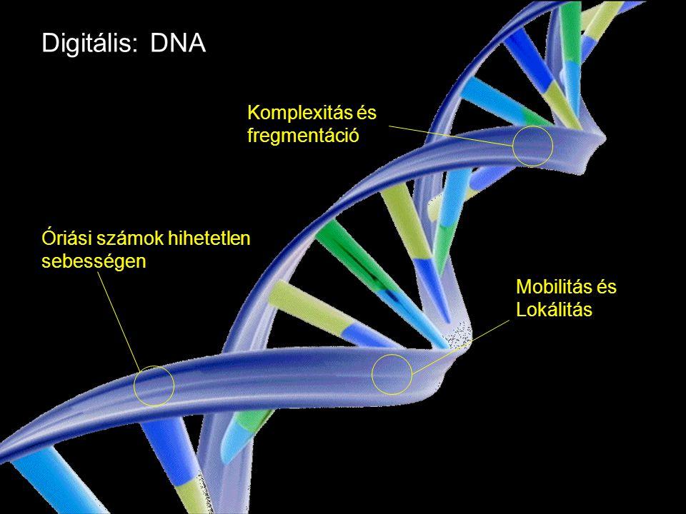 Google Confidential and Proprietary Digitális: DNA Óriási számok hihetetlen sebességen Komplexitás és fregmentáció Mobilitás és Lokálitás
