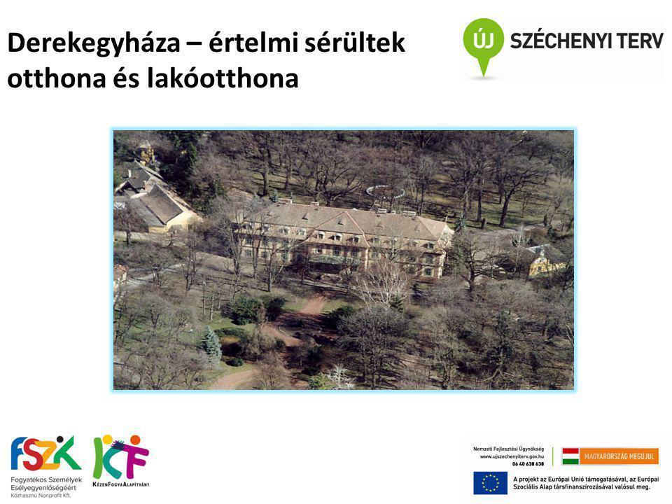 Derekegyháza – értelmi sérültek otthona és lakóotthona
