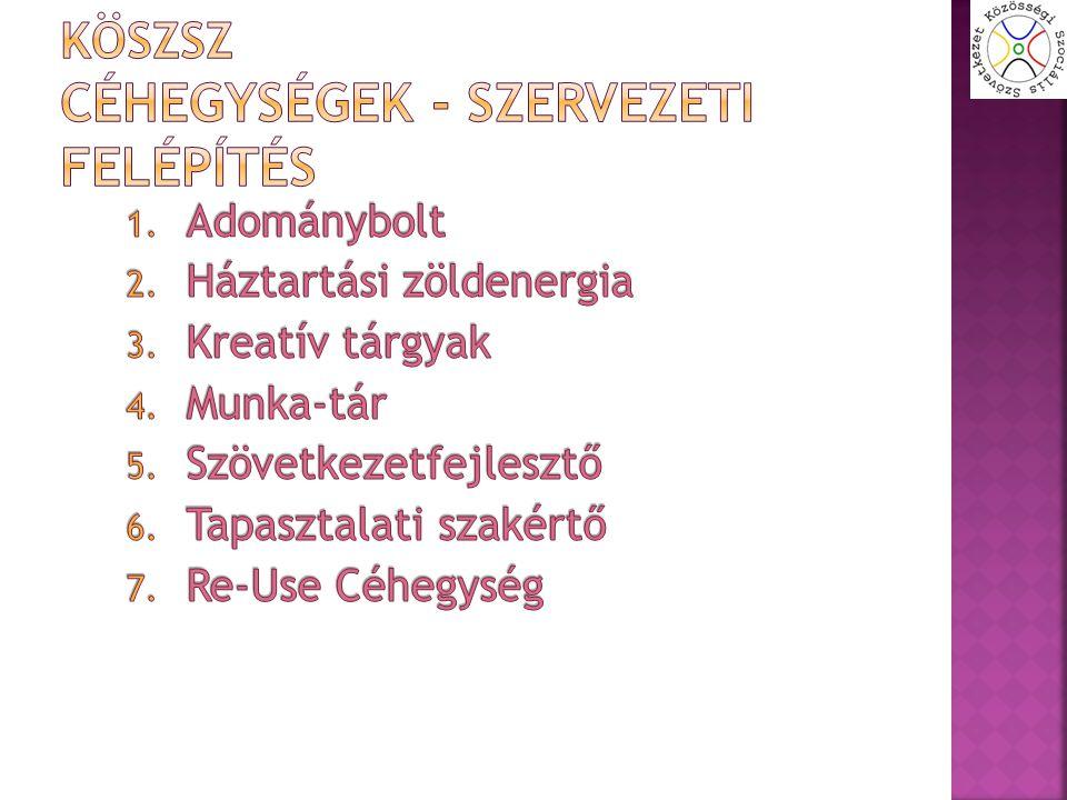  Alapprobléma: Ilyen eszközökhöz jelenleg Magyarországon piaci forgalmazásban nem lehet hozzájutni.