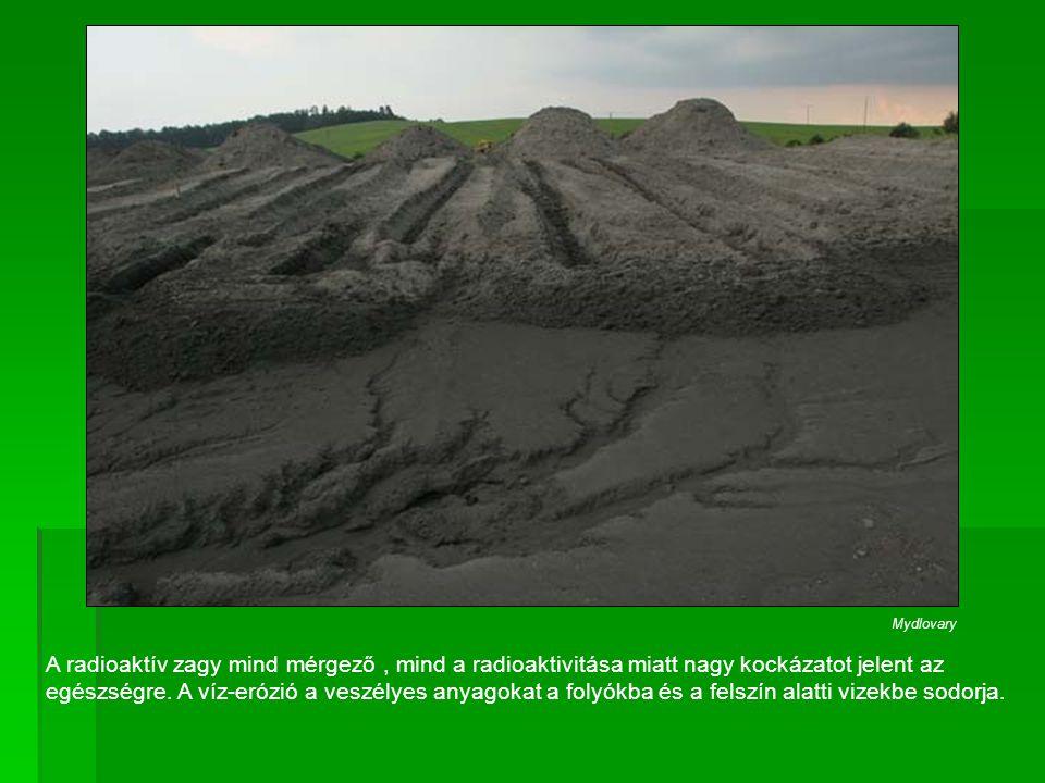 A radioaktív zagy mind mérgező, mind a radioaktivitása miatt nagy kockázatot jelent az egészségre. A víz-erózió a veszélyes anyagokat a folyókba és a