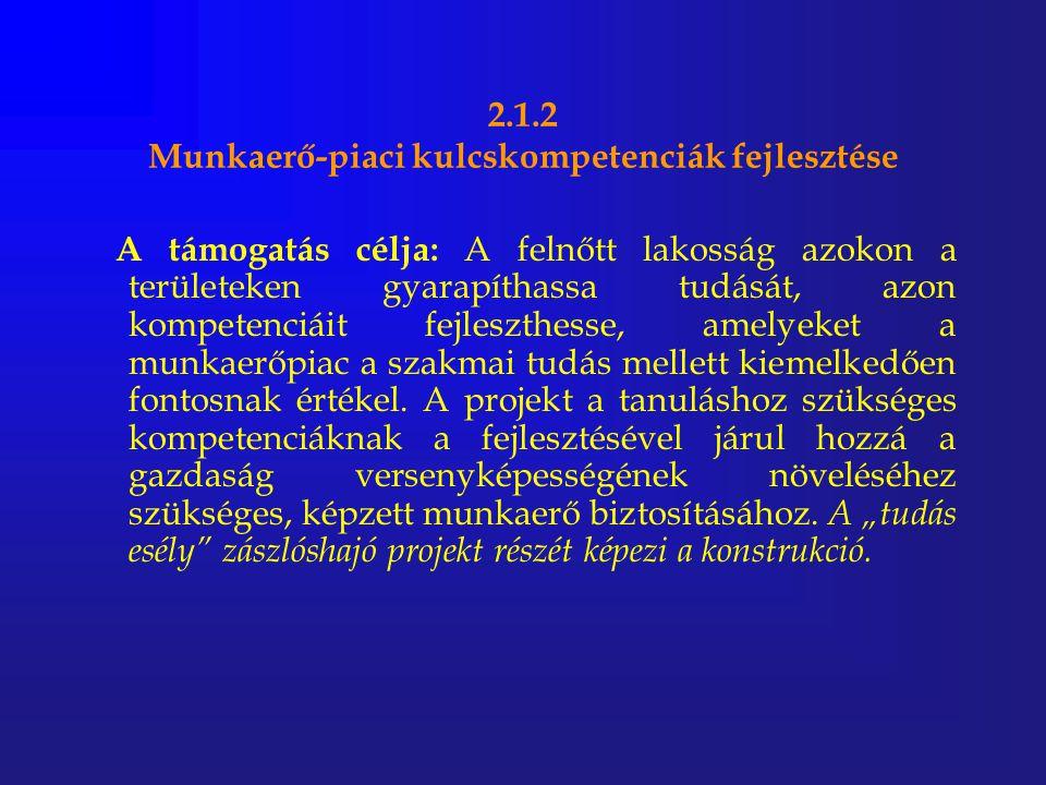 2.1.2 Munkaerő-piaci kulcskompetenciák fejlesztése A támogatás célja: A felnőtt lakosság azokon a területeken gyarapíthassa tudását, azon kompetenciái