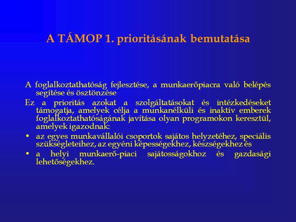 A TÁMOP 1. prioritásának bemutatása A foglalkoztathatóság fejlesztése, a munkaerőpiacra való belépés segítése és ösztönzése Ez a prioritás azokat a sz