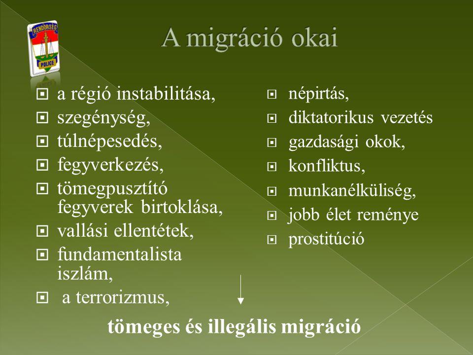 """ Hazánk mindeddig csak tranzit ország volt;  De a nyugat-európai országok szigorodó bevándorlási politikája és az ország """"nyugatosodása miatt egyre inkább célországgá is válunk;  Magyarország az illegális migráció elleni küzdelem tekintetében az egyik legfontosabb tagállam az Európai Unión belül;  A meglehetősen hosszú külső határ mellett az Európán keresztülhúzódó migrációs útvonalak jelentős része itt találkozik, halad keresztül."""