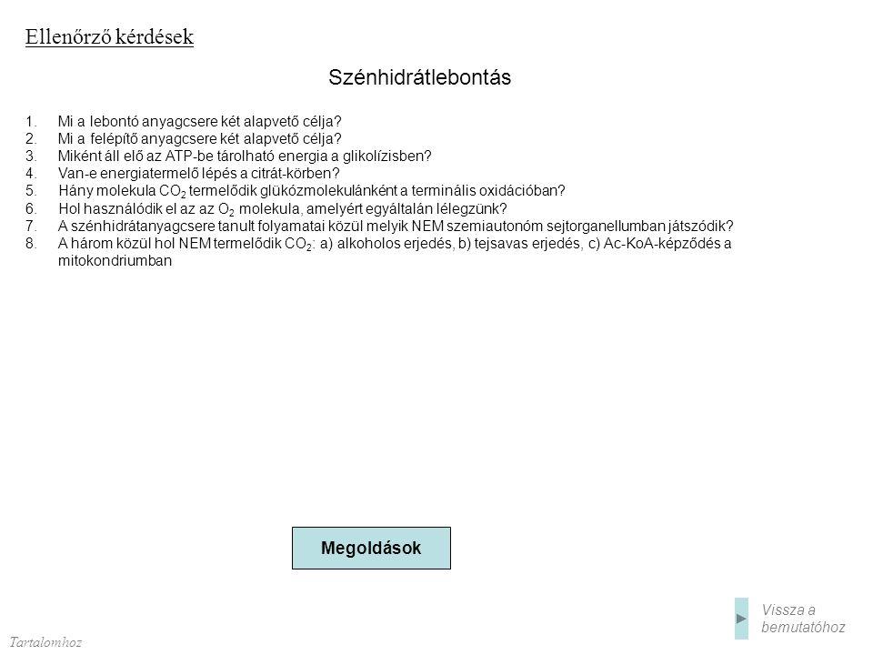 Ellenőrző kérdések 1.Mi a lebontó anyagcsere két alapvető célja? 2.Mi a felépítő anyagcsere két alapvető célja? 3.Miként áll elő az ATP-be tárolható e