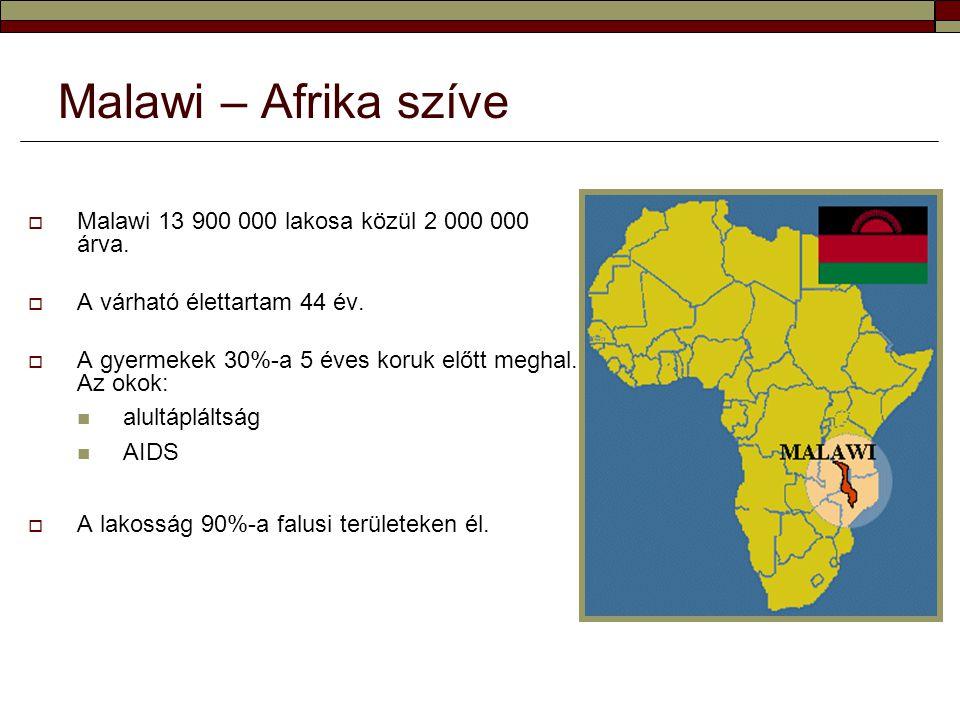  Malawi 13 900 000 lakosa közül 2 000 000 árva.  A várható élettartam 44 év.  A gyermekek 30%-a 5 éves koruk előtt meghal. Az okok:  alultápláltsá
