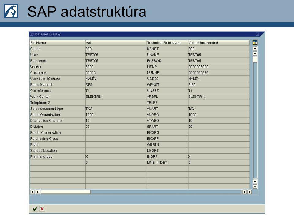 SAP adatstruktúra