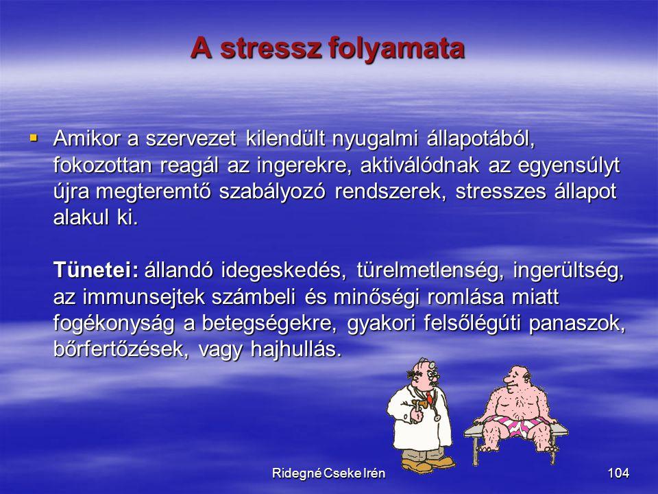 Ridegné Cseke Irén104 A stressz folyamata  Amikor a szervezet kilendült nyugalmi állapotából, fokozottan reagál az ingerekre, aktiválódnak az egyensú