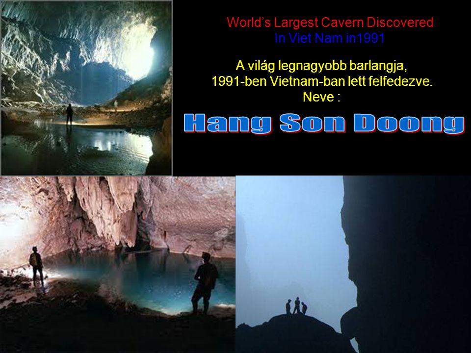 World's Largest Cavern Discovered In Viet Nam in1991 World's Largest Cavern Discovered In Viet Nam in1991 ` A világ legnagyobb barlangja, 1991-ben Vietnam-ban lett felfedezve.