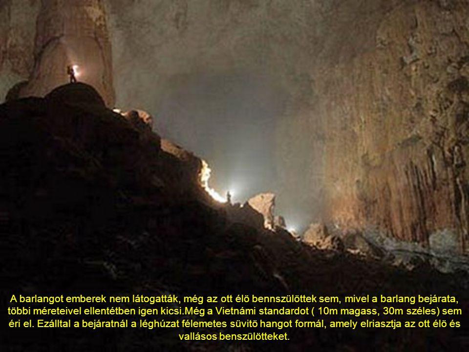 a Son Doong legnagyobb kürtöjének hossza 5 kilométer, magassága 200 méter, szélessége 150 méter.