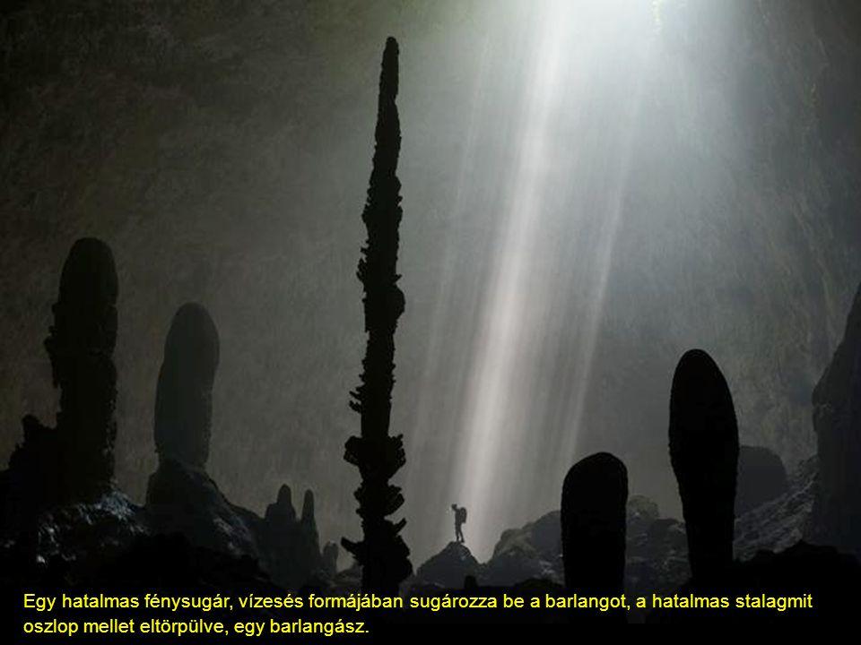 A barlang hossza 6 kilométer Összefüggö kürtök és a mini öserdö 400 méterre a föld alatt
