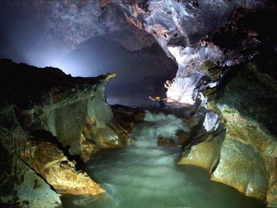 A barlangon belül látható mini öserdö egy csekély kis része,valamint a fény és a méretek csodás öszzhangja láthato ezen a képen.