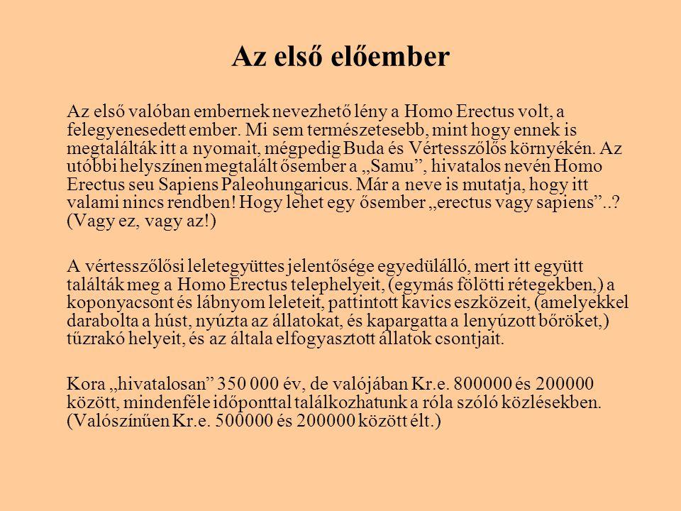 Az első előember Az első valóban embernek nevezhető lény a Homo Erectus volt, a felegyenesedett ember. Mi sem természetesebb, mint hogy ennek is megta