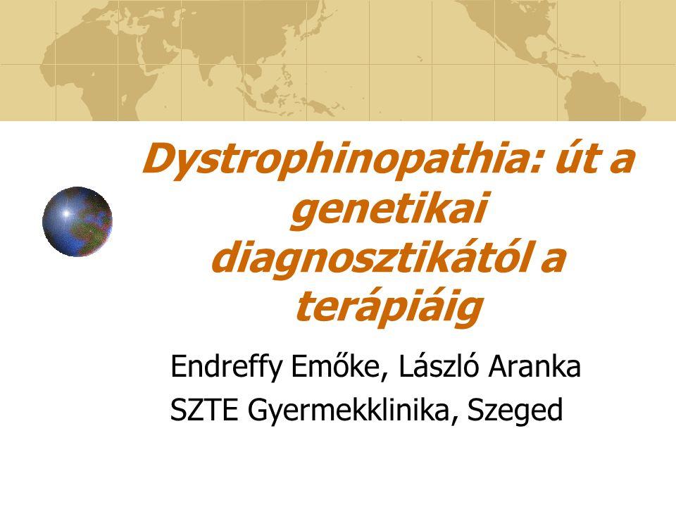 Dystrophinopathiak (DMD/BMD) DMD DMD: XR öröklődésű, lethalis, progresszív izomvesztéssel járó neuromuscularis genetikai kórkép (1/3 500 fiú, BMD 1/30 000 fiú).