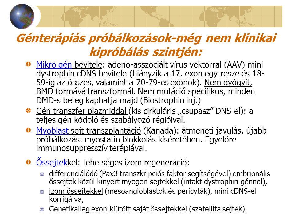 Génterápiás próbálkozások-még nem klinikai kipróbálás szintjén: Mikro gén bevitele: adeno-asszociált vírus vektorral (AAV) mini dystrophin cDNS bevite
